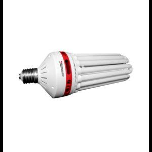 CFL eco star floraison 5U-125w 2700K