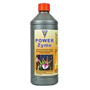Power Zyme 1L Hesi