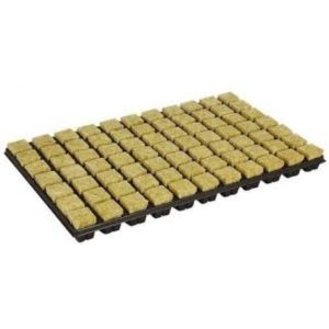 Cultilene plateau a semis / boutures de 77 tampons
