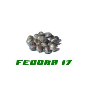 Fedora 17 Gardinova 200Pcs