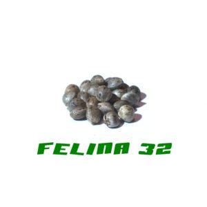 Felina 32 Gardinova 200Pcs